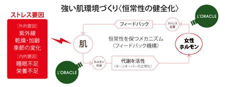 oracle02.jpg